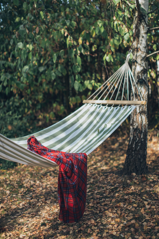 Erdődi-Juhász Ágnes: Mint avokádó közepén a mag